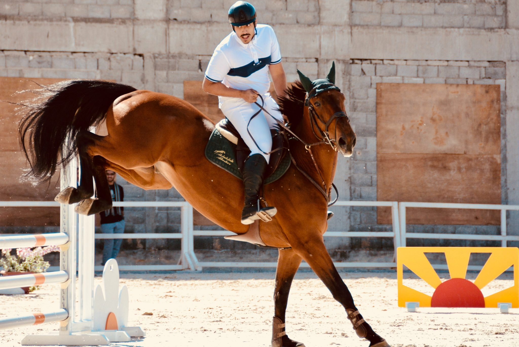 saut d'obstacle cheval et cavalier